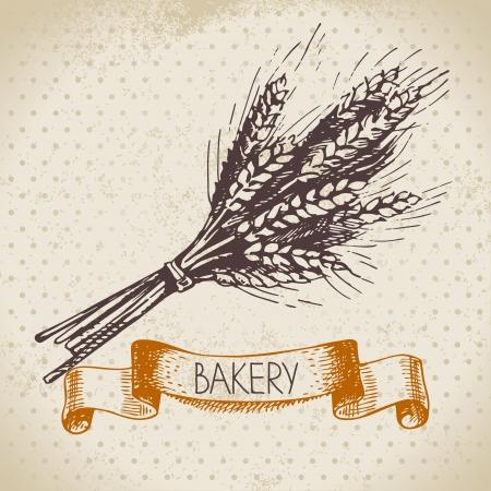 produits céréaliers: Boulangerie croquis fond. Illustration tirée par la main de cru de blé