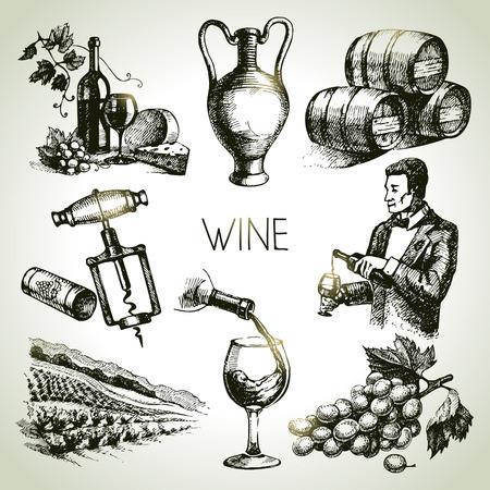 sommelier: Dibujado a mano conjunto de vectores vino boceto
