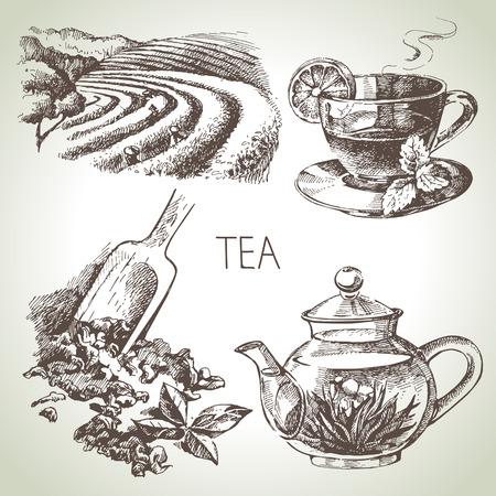 Hand gezeichnete Skizze Vektor-Tee-Set Standard-Bild - 26865952