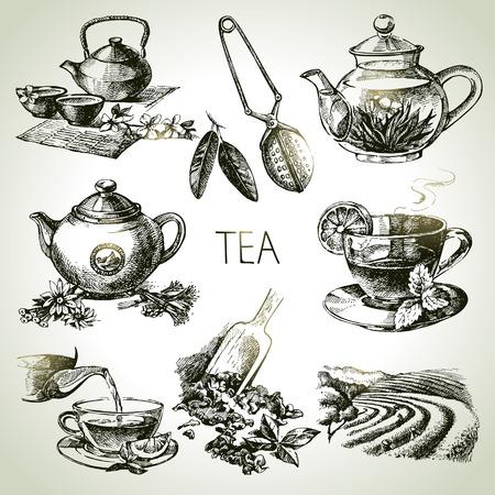 手描きスケッチ ベクトルお茶セット