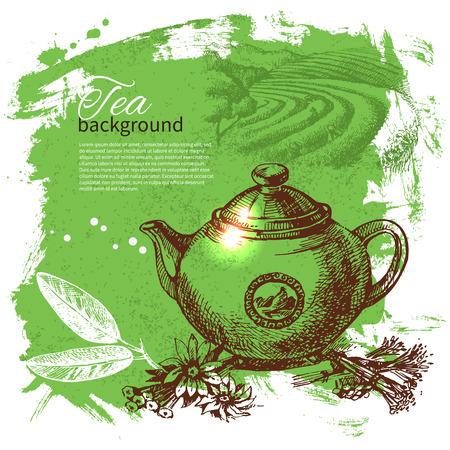 chamomile tea: Tea vintage background. Hand drawn sketch illustration. Menu design  Illustration