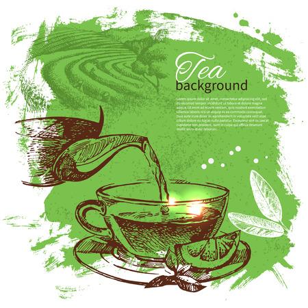 tea ceremony: Tea vintage background. Hand drawn sketch illustration. Menu design  Illustration