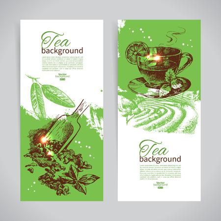 green tea cup: Set of tea vintage banners. Hand drawn sketch illustrations. Menu design backgrounds Illustration