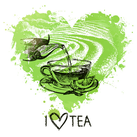 tea ceremony: Tea background with splash watercolor heart and sketch . Hand drawn illustration. Menu design