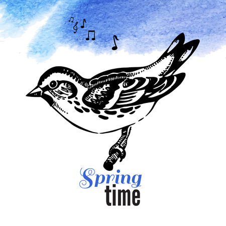 Vector illustration of hand drawn sketch bird. Spring time watercolor background