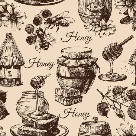 honey pot: Honey seamless pattern with hand drawn sketch illustration