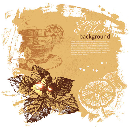 coffee leaf: Vintage background with hand drawn sketch herbs and spices. Menu design