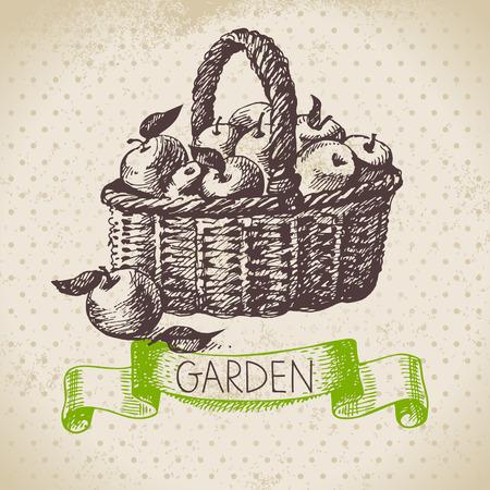 Vintage sketch gardening background. Hand drawn design  Vector