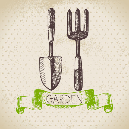spade: Vintage sketch gardening background. Hand drawn design