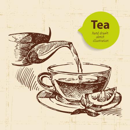 chamomile tea: Tea vintage background. Hand drawn sketch illustration. Menu design