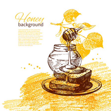 linden flowers: Honey background with hand drawn sketch illustration