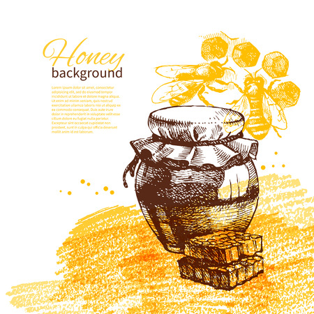 honey bee: Honey background with hand drawn sketch illustration