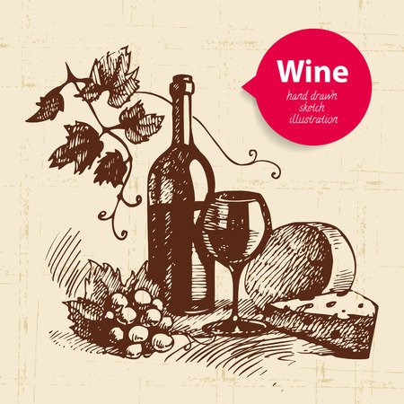wine and cheese: Wine vintage background with banner. Hand drawn sketch illustration