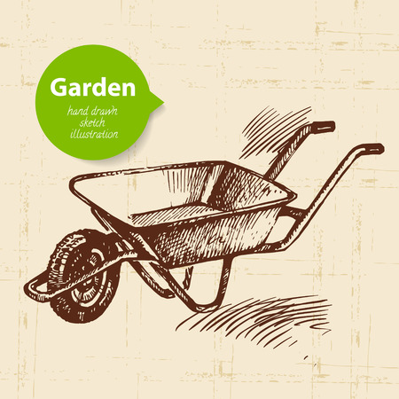 garden tool: Vintage sketch wheelbarrow background. Hand drawn design