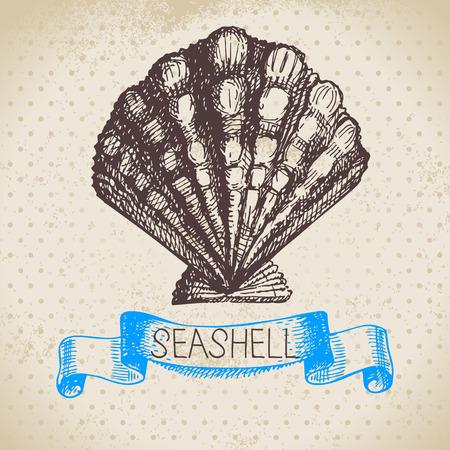 Seashell hand drawn sketch  Vintage illustration Vector