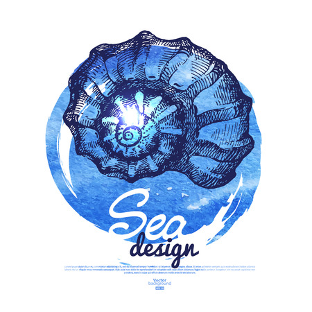 Seashell banner. Sea nautical design. Hand drawn sketch and watercolor illustration