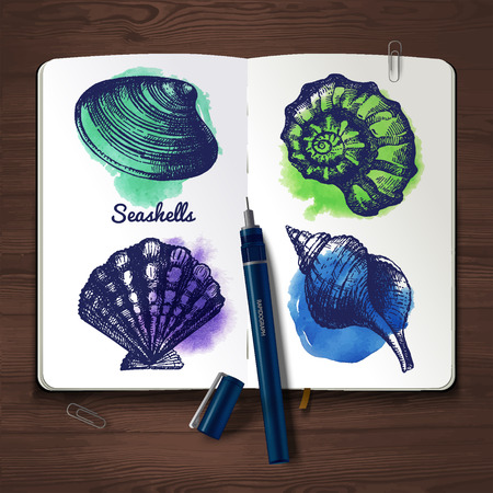 Set of hand drawn sketch and watercolor seashells. Sketchbook paper on wooden background.  Vector