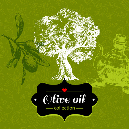 olive tree: Vintage olive background with hand drawn sketch illustration and floral pattern. Design of package Illustration