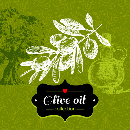 Vintage olive background with hand drawn sketch illustration and floral pattern. Design of package Vector
