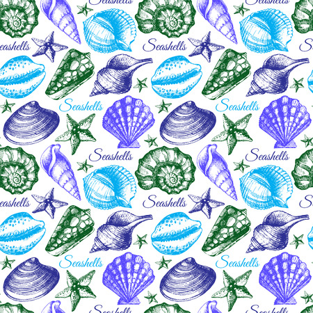 seashell: Seashell seamless pattern. Hand drawn sketch illustration  Illustration