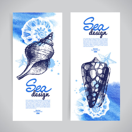 Seashell banners. Sea nautical design. Hand drawn sketch and watercolor illustrations Vector