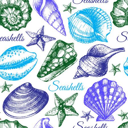 shell pattern: Seashell seamless pattern. Hand drawn sketch illustration