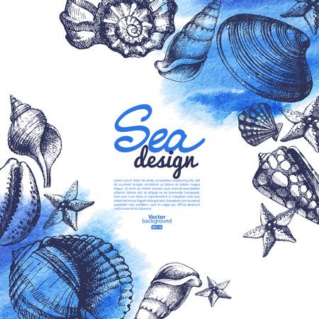 seashell: Seashell background. Sea nautical design. Hand drawn sketch and watercolor vector illustration