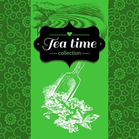 green tea cup: Tea vintage background. Hand drawn sketch illustration. Menu and package design