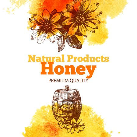 Honey background with hand drawn sketch and watercolor illustrations. Menu and package design