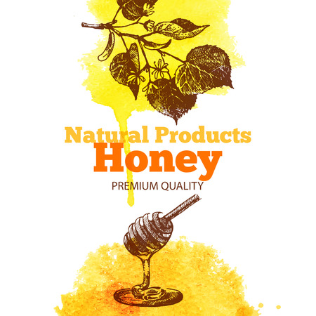 Honey background with hand drawn sketch and watercolor illustrations. Menu and package design Vector