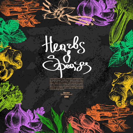 root vegetables: Vintage background with hand drawn sketch herbs and spices. Vector illustration. Chalkboard menu design Illustration
