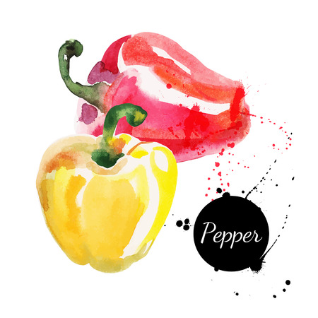 Pimentas vermelhas e amarelas Mão desenhada pintura em aquarela sobre fundo branco ilustração vetorial