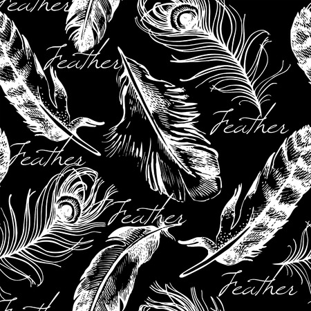 Vintage feather seamless pattern. Hand drawn sketch vector illustration Vector
