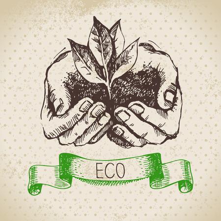 leaf texture: Sketch ecology vintage background. Hand drawn vector illustration