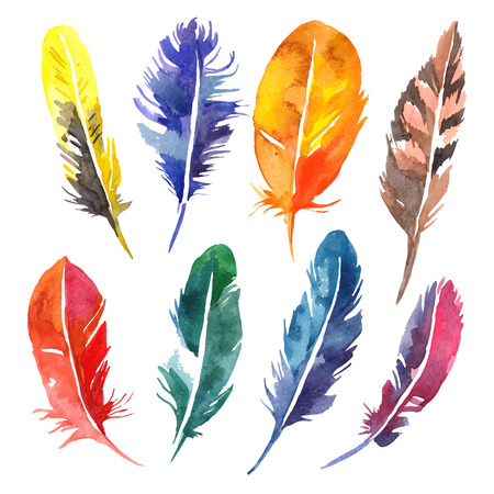 Watercolor feather set. Hand drawn vector illustration Çizim
