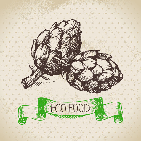 Hand drawn sketch artichoke vegetable. Eco food background.Vector illustration