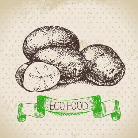 手描きスケッチ ジャガイモ野菜。エコ食品の背景。ベクトル図