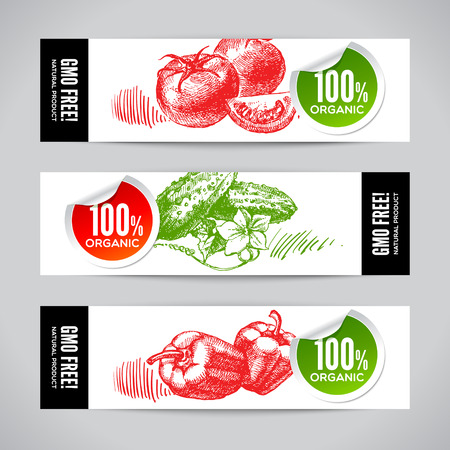 organic peppers sign: Set of banners with hand drawn sketch vegetable. Eco food backgrounds.Vector illustration