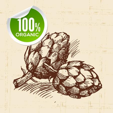 artichoke: Hand drawn sketch vegetable artichoke. Eco food background.Vector illustration Illustration