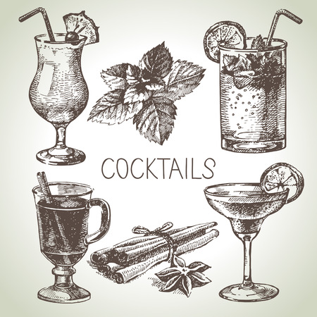 cocktails: Hand drawn sketch set of alcoholic cocktails. Vector illustration