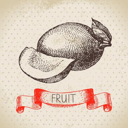 mango fruta: Dibujado a mano boceto fruta de mango. Eco fondo de alimentos. Ilustraci�n vectorial