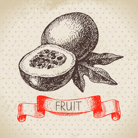 passion ecology: Hand drawn sketch passion fruit. Eco food background. Vector illustration Illustration