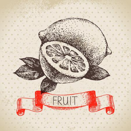 Hand drawn sketch fruit lemon. Eco food background. Vector illustration 向量圖像