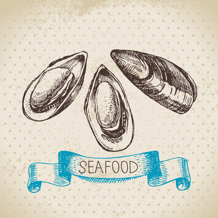 seafood background: Vintage sea background. Hand drawn sketch seafood vector illustration of mussels