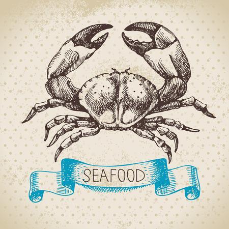 mariscos: Mar de fondo de la vendimia. Dibujado a mano ilustraci�n vectorial de mariscos esbozo de cangrejo