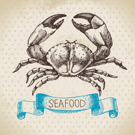 seafood background: Vintage sea background. Hand drawn sketch seafood vector illustration of crab