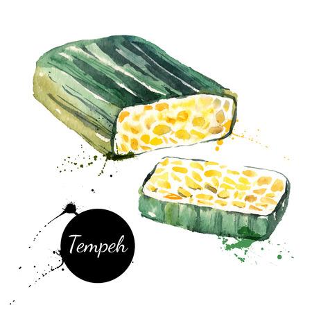Vegetarian food banner. Vector illustration. Watercolor tempeh 版權商用圖片 - 40338673