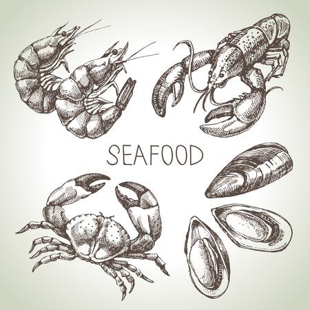 Dibujado a mano conjunto de dibujos de pescados y mariscos. Ilustración vectorial