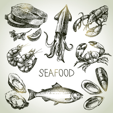 Hand drawn sketch set of seafood. Vector illustration Vettoriali