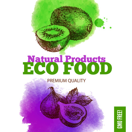 fig leaf: Eco food menu background. Watercolor and hand drawn sketch fruits. Vector illustration